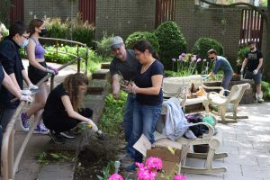 people digging in plant garden near chairs